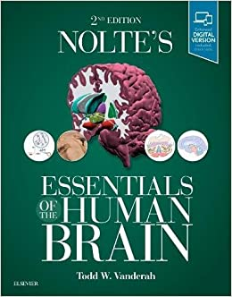 Nolte's Essentials of the Human Brain, 2e