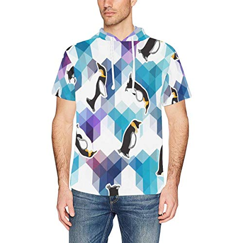 InterestPrint Men's Hoodies Shirts Crystal Ice Penguin Lightweight Hooded T-Shirt M