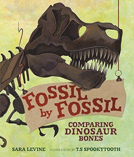 Fossil by Fossil: Comparing Dinosaur Bones Fossil Dinosaur Bone