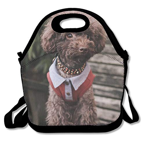 SARA NELL Neoprene Kids Lunch Backpack Cute VIP Puppy On Wooden Board Lunch Tote Bags Lunch Bag Lunch Boxes Handbag with Adjustable Shoulder Strap for Boys Girls Teens