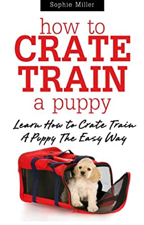 how to crate train a puggle puppy