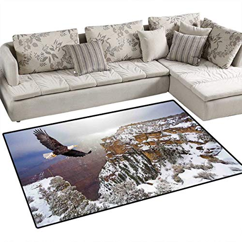 Africa Kids Carpet Playmat Rug Aerial View of Bald Eagle Flying in The Snow Covered Grand Canyon Rocky Arizona USA Door Mats for Inside Non Slip Backing 36