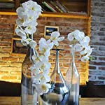 Ivalue-28-Artificial-Orchid-Flower-Stem-Plants-Pack-of-4-Real-Touch-White-Simulation-Butterfly-Phalaenopsis-Flowers-for-Home-Wedding-Party-Decoration-4-White-Orchid