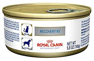 Royal Canin Recovery Rs Food For Dogs And Cats