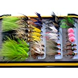Outdoor Planet 24/36Pieces Dry Fly, Wet Fly and Nymph Fly Lure Assotment for Trout Fly Fishing.