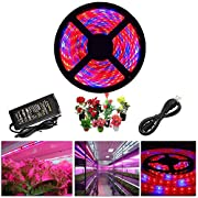 ZCPlus LED Strip Light Plant Grow Lights 16.4ft 5050 SMD Waterproof Full Spectrum Red Blue 4:1 Growing Lamp for Aquarium Greenhouse Hydroponic Plant Garden Flowers (5 M) ...
