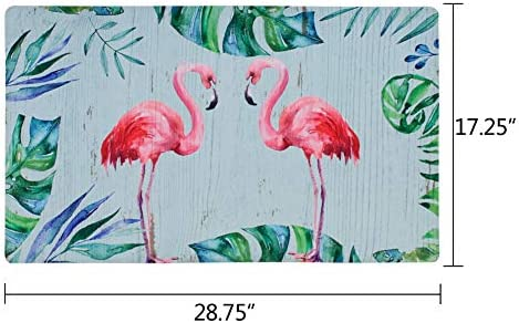 Doormat Entrance Floor Mat Rubber Back Non Slip Doormat Welcome Printing Indoor Outdoor Door Mat Non-Woven Fabric Top 17×29 Inch Flamingo