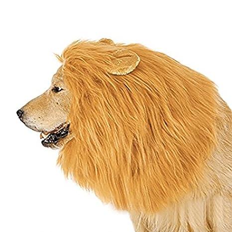 Bescita Lion Mane Lion cola para perro disfraz regalo: Amazon.es ...