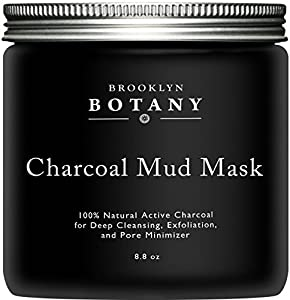 Activated Charcoal Mud Mask 8.8 fl oz - Facial Mask For Deep Cleansing & Exfoliation - Best for Shrinking Pores, Fight Acne, Blackheads & Oily Skin - 5X Safer than Peel Off Mask - Brooklyn Botany