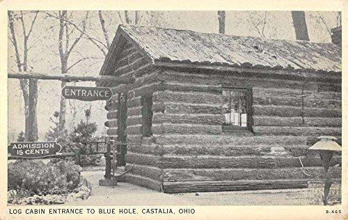Castalia Ohio Log Cabin Entrance To Blue Hole Antique Postcard K39085 (Log Postcard)