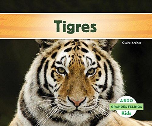 Tigres (Grandes Felinos/Big Cats) (Spanish Edition) by Abdo Kids