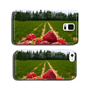 Strawberry field cell phone cover case iPhone5