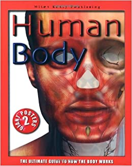 The ultimate guide to the human body [2000 documentary] 2 youtube.