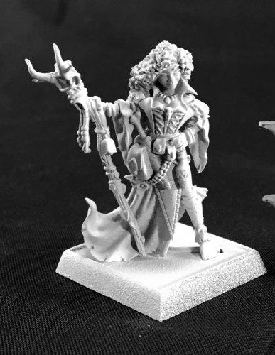 Andowyn Thrushmoor Bonehenge Iconic Miniature 25mm Heroic Scale Dark Heaven Legends
