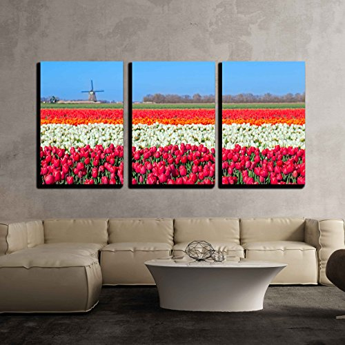 wall26 - 3 Piece Canvas Wall Art - Colorful Tulip Fields and Dutch Windmill in North Holland - Modern Home Decor Stretched and Framed Ready to Hang - 16
