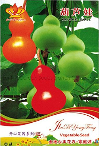 Seeds Market Rare family's colorful decorative gourd seeds, original packing, 10 seeds / packaging, very beautiful landscape plant