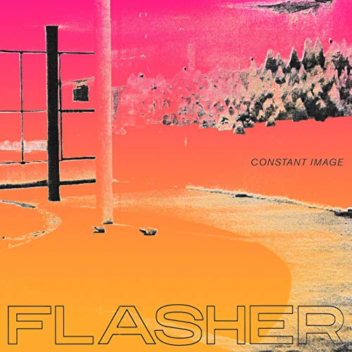 Top flasher vinyl for 2019