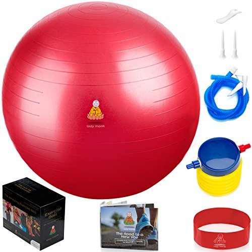 Fitness Exercise Equipment Set: Professional Core Strength Swiss Stability Anti-burst Tested Ball for Residence, Office & Gym with Foot Pump & Workout Guide – DiZiSports Store