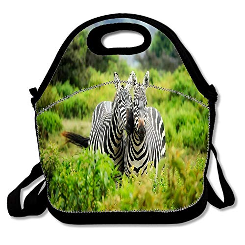 Kenya Africa Zebras Wildlife Lunch Bag for Women Insulated Lunch Box with Adjustable Shoulder Strap, Lunch Tote Bag for Work Picnic