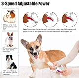 BOSI Dog Nail Grinder, Professional Low Noise Pet