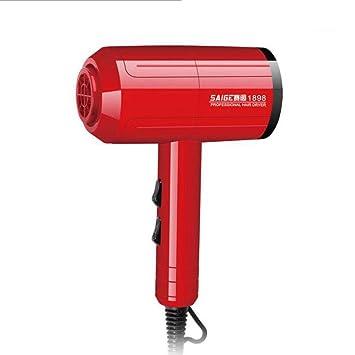 CFJ-GY Secadores de pelo Secador de cabello iónico profesional con calor infrarrojo lejano, secador de cabello Salon (color : Red): Amazon.es: Salud y ...