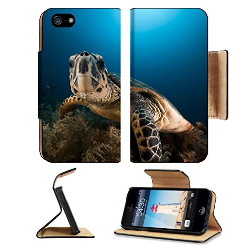 MSD Premium Apple iPhone 5 iPhone 5S Flip Pu Leather Wallet Case iPhone5 IMAGE ID: 8831570 Hawksbill turtle in the Red Sea (Sunray Headphones)