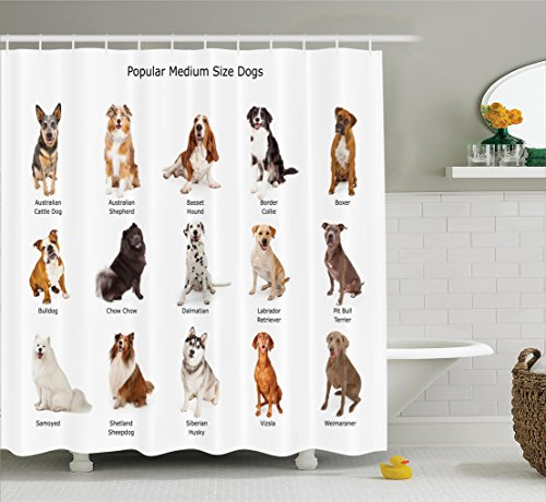 Breed Type (Dog Lover Decor Shower Curtain Set By Ambesonne, A Group Of Different Puppy Breeds Family Type Species Dalmatian Husky Bulldog Image Print, Bathroom Accessories, 69W X 70L Inches, Multi)