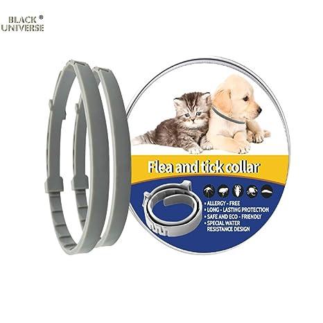 Collares Para Perros Y Gatos, Collar De Protección De 8 ...