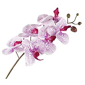 "JAROWN 4pcs 30"" Phalaenopsis Orchid Artificial Branches Real Touch Latex Flowers for Home Office Wedding Decoration 15"