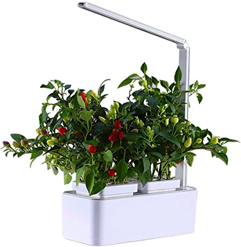 Signstek Smart Hydroponics Indoor Herb Garden Kit Mini Plant Grow ...
