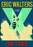 Camp X Fool's Gold: Book 3