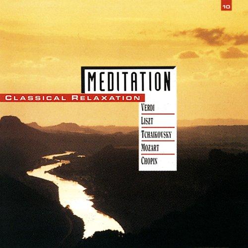 Meditation, Vol. 10