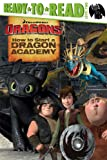 How to Start a Dragon Academy, , 1481419250