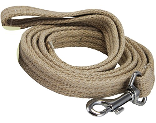Dog Leash 4.5ft Long Organic Cotton Web for Training, Beige 4 Sizes (Small: 5/8