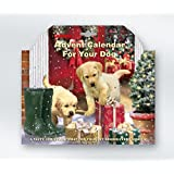 Calendrier De L'avent pour les chiens avec traiter les derrière toutes les portes - drole illustrative