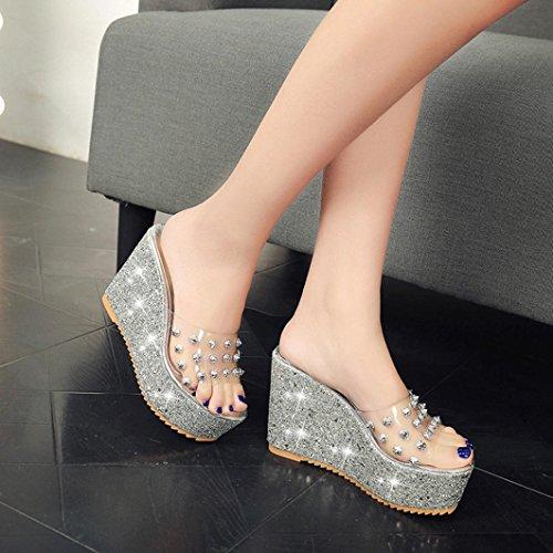 Hatop Fashion Summer Transparent Wedge Sandals Womens Glitter Thick Heel Platform Slippers Silver zYzrEZWGpP