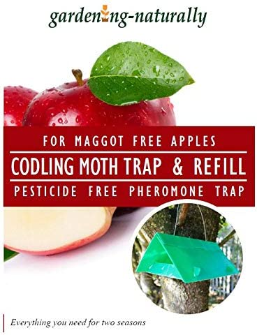 Gardening-Naturally Codling Moth Trap Protecting Apples and Pears from Maggots Moth Refill Pack of 2