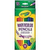 Crayola 12ct Watercolor Colored Pencils Case of 48 Dozens