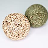 CATNIP/SILVERVINE FITNESS BALL COMBI