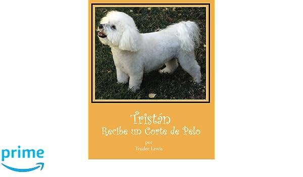 Tristan Recibe Un Corte de Pelo (Cuentos Sobre Tristan y Trudee) (Spanish Edition): Trudee Lewis, Joanne Yates PhD, Beth Rodda, Mario Chocooj: ...