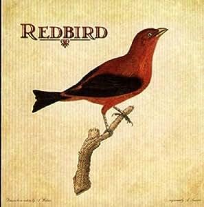Redbird