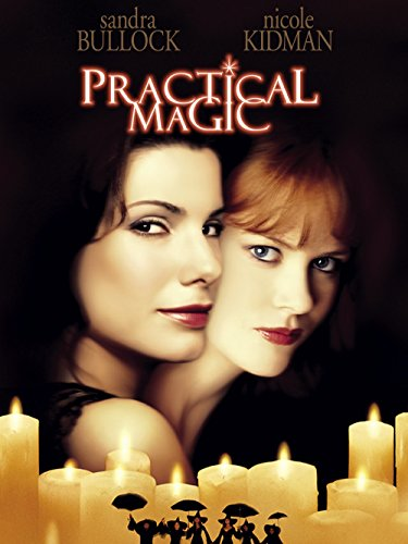 Witches Of Eastwick Halloween Costumes (Practical Magic (1998))