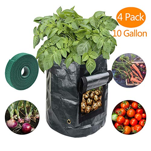 Sfirey Garden Grow Bags 4 Pack 10 Gallon Planter Growing Bag Plant Tub with Access Flap Perfect Planting Vegetables: Potato, Onion, Tomato, Carrot