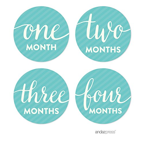 Andaz Huddle Baby & Co. Baby Shower Collection, Pregnancy and Baby Belly Milestone Label Stickers Months 1 to 16, 4-inch Round, 1-Set, Newborn Photoshoot Props