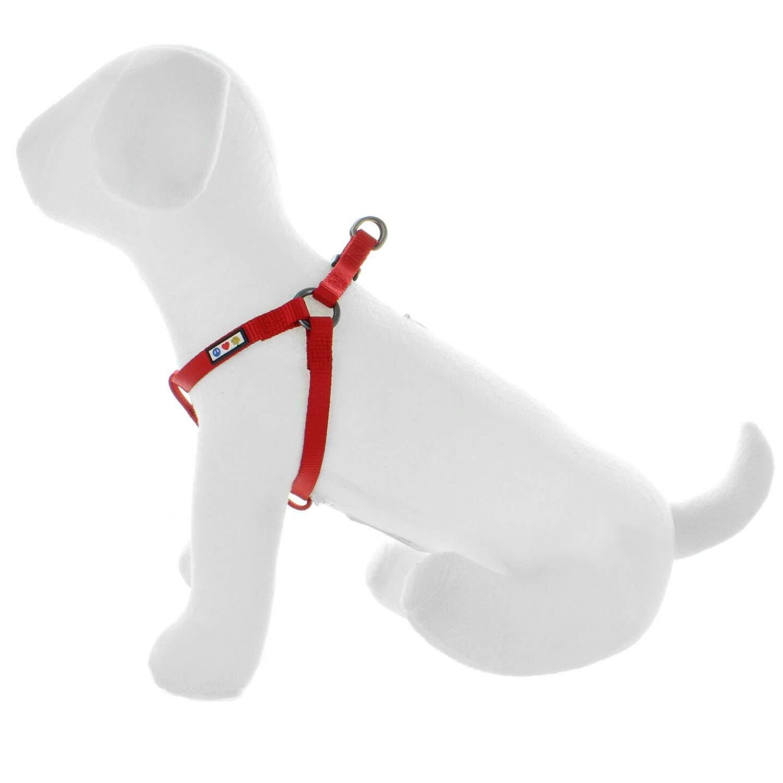 Pawtitas Arnes de Entrenamiento Chaleco Pechera para Perros y Cachorros arnes de adiestramiento Ideal para Caminar Perros Cachorros arnes Peque/ño Color Lila
