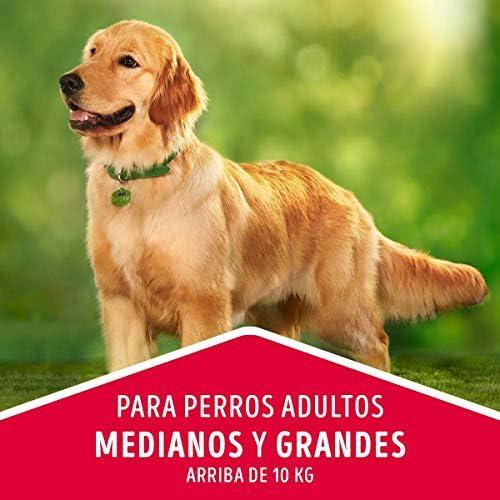 Dog Chow comida para Perros Adultos Medianos y Grandes con Extralife 7.5kg 8
