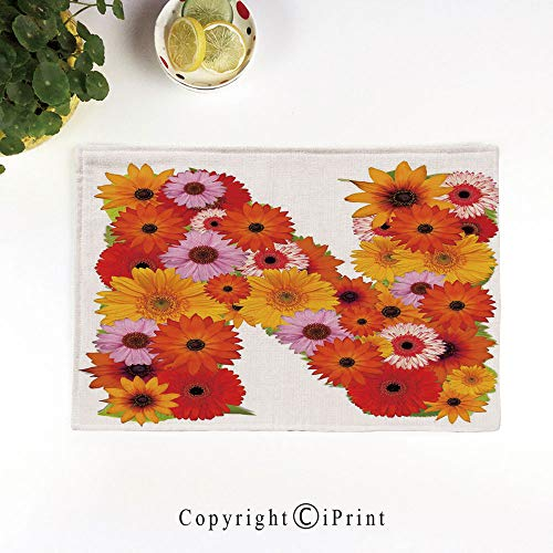 LIFEDZYLJH Everyday Place mat for Dinner Parties,Summer Outdoor Picnics,Set of 4,Machine Washable,Vibrant Flowers Summer Color Scheme Gerbera Daisies Bouquet Style N Sign Alphabet,Multicolor
