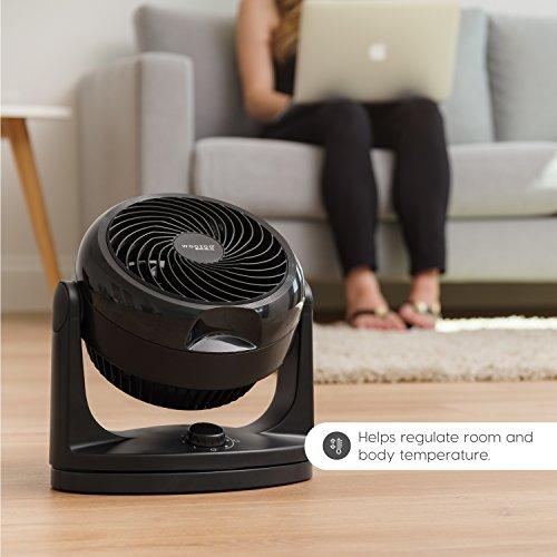 Woozoo HD18U Oscillating Circulating Fan, Black