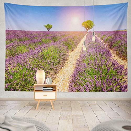 RCOLOYHR Wall Hanging Tapestry Lavender France Season with Beautiful Purple Flowers Summer Harvest Wall Tapestry for Adults Kids' Room Decor Wall Blanket Beach Towel Curtains 60