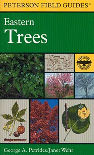 A Field Guide to Eastern Trees: Eastern United States and Canada, Including the Midwest (Peterson Field Guides (Paperback))
